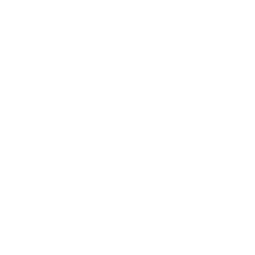 Ace Nutrition